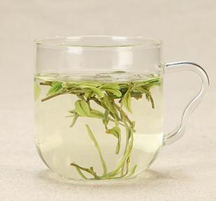 为什么溧阳天目湖白茶一年只采摘一次
