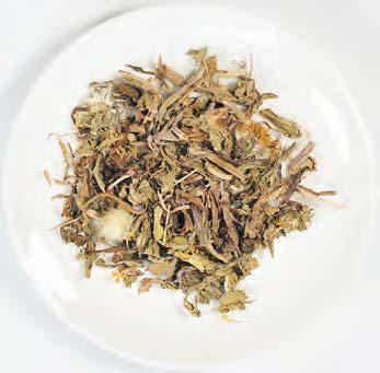 蒲公英茶清火利尿,清热健胃的功能