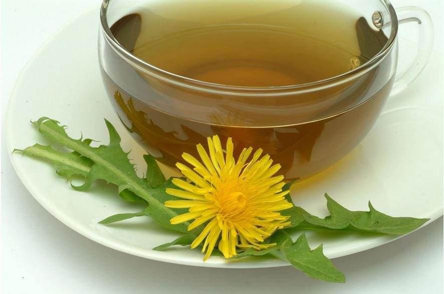 蒲公英茶能提神醒脑、降低胆固醇功效