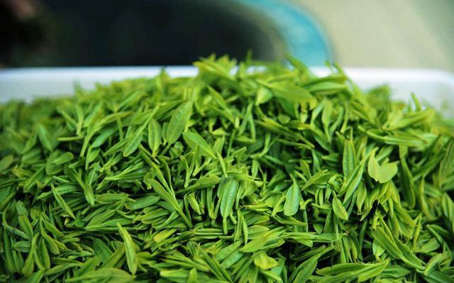 怪不得那么多上班族爱喝绿茶看完这些你也会爱上它