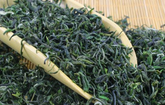 英山云雾茶的产地在哪里英山云雾茶是绿茶吗