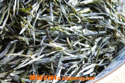 东白春芽是什么茶东白春芽的功效
