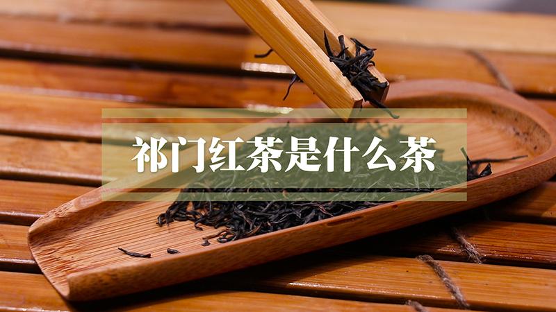祁门红茶是什么茶