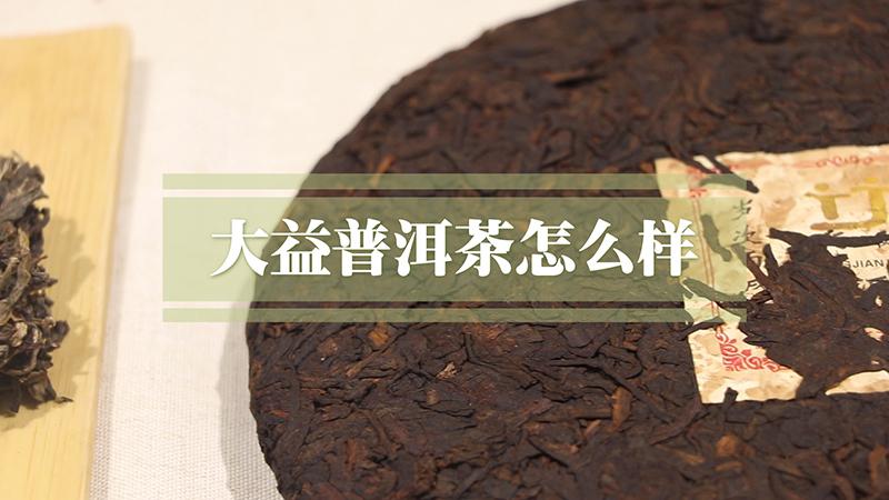 云南大益普洱茶