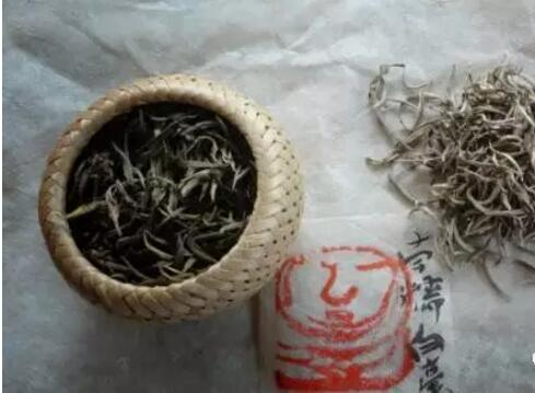 茶百科之南糯白毫