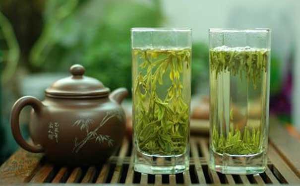 崂山绿茶的8大养生功效分享