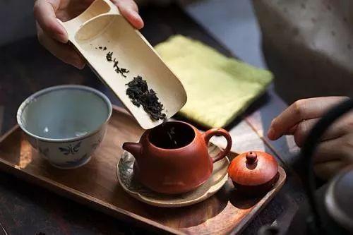 """戚国伟,一个国家级""""茶农""""50余年对西湖龙井的坚持"""