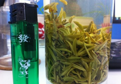黑苦荞茶的生产地介绍