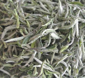 白茶的功效和作用详解