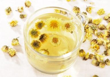 怀孕能喝菊花茶吗