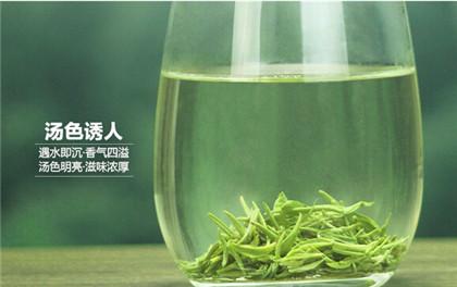 庐山云雾茶绿茶