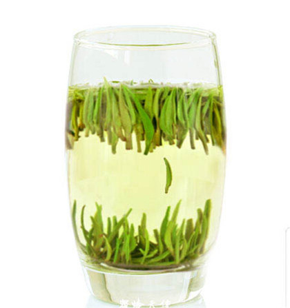 说说日照绿茶的泡法