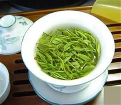 喝绿茶的禁忌