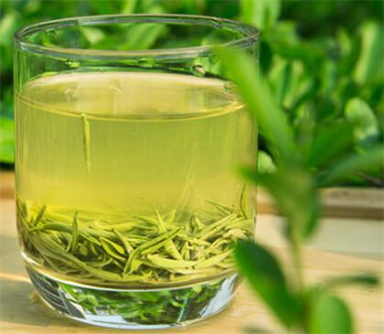日照绿茶品牌排名情况