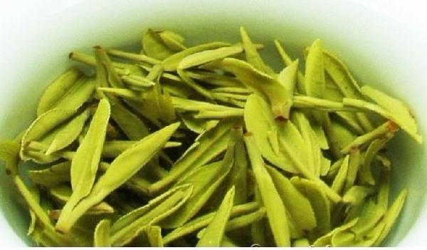 白茶的功效与作用介绍