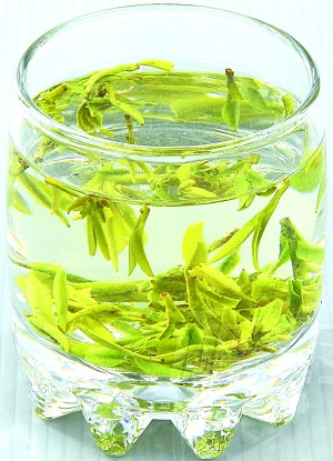 安吉白茶的种类有多少?