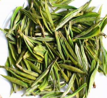 安吉白茶是白茶吗