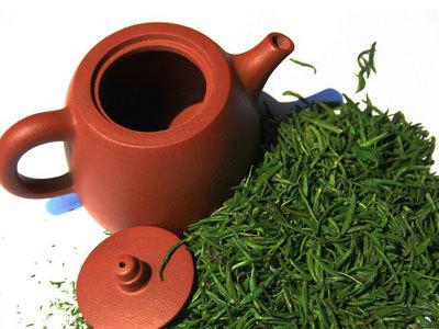 茉莉花茶属于绿茶种类吗?