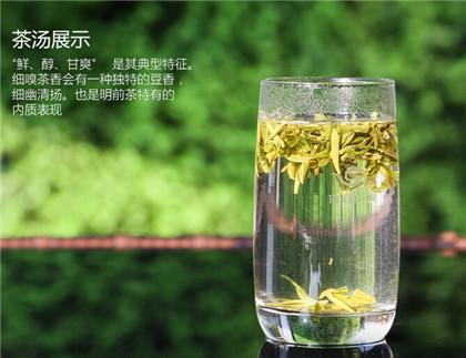 杨柳岸西湖龙井的泡法