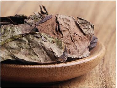 老白茶的副作用有哪些?