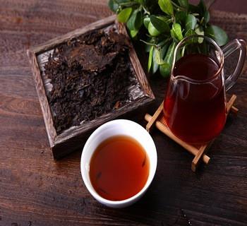 六堡茶的知识介绍