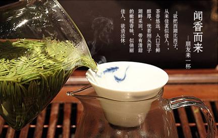 什么绿茶减肥最好