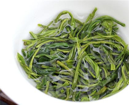 茶减肥之普洱与绿茶减肥功效
