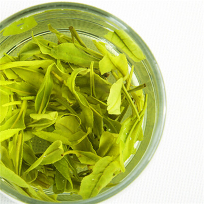 竹叶青茶团购价钱是多少?