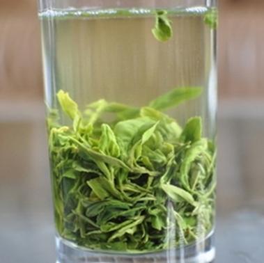 日照绿茶跻身茶叶品牌五十强