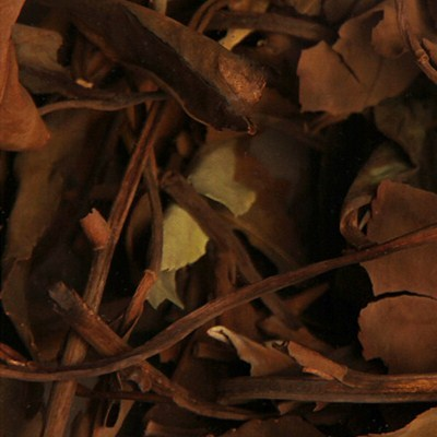 贡眉的工艺制法和历史文化