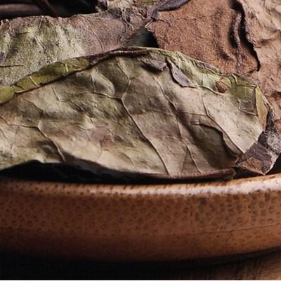 茶中极品白茶贡眉的品质特点