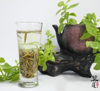 老寿眉茶是什么茶