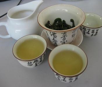 白牡丹是一款什么茶?