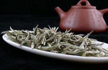 白牡丹白茶的禁忌介绍