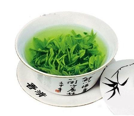绿茶品茗必学的冲泡工序