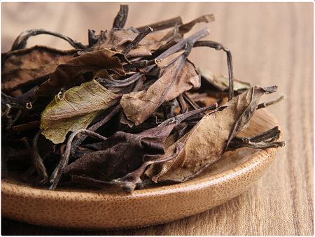 白茶的历史介绍