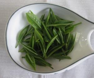 评价白茶的质量指标
