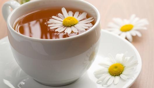 杭白菊花茶的功效与作用有哪些