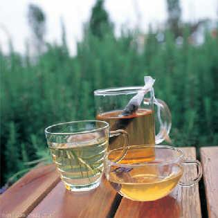 常饮绿茶的好处