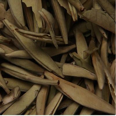 白茶的主要品种介绍