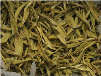 雪菊枸杞茶的功效