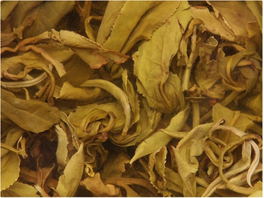 看看:雪菊茶有什么主要成分
