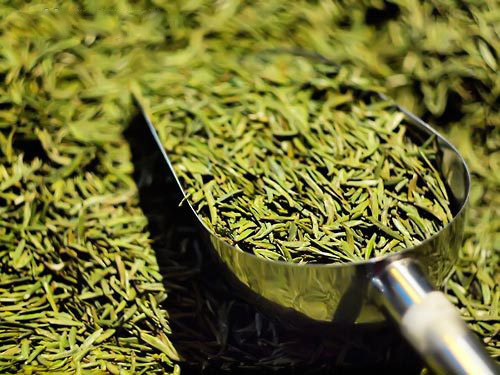 绿茶和红茶哪个更减肥?