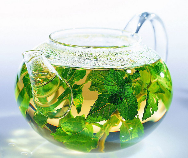 绿茶的基本介绍