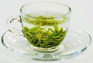 绿茶是什么发酵的茶