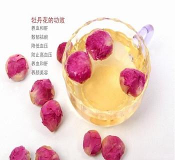春季女性必选花茶介绍