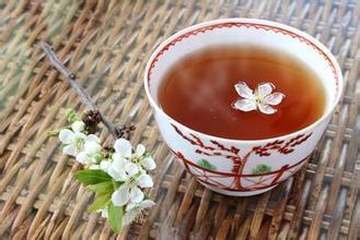 为什么品饮普洱茶要分体质?