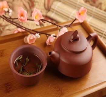 黄茶代表沩山毛尖