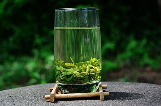 河南信阳毛尖茶叶价格是多少