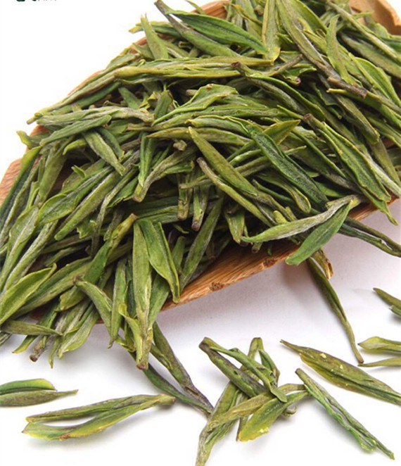 安吉白茶作用有哪些